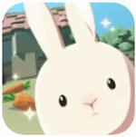 兔子可爱了2