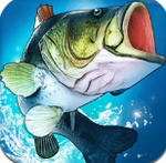 FishingClash3D钓鱼冲突