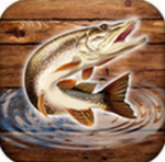 鱼雨钓鱼模拟器